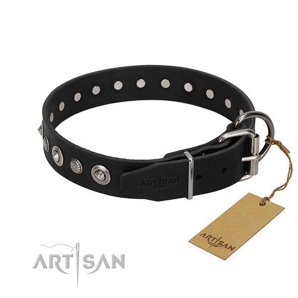 Best quality full grain natural leather dog collar with extraordinary embellishments