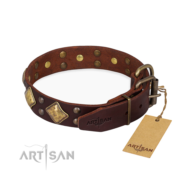 Leather dog collar with fashionable reliable adornments