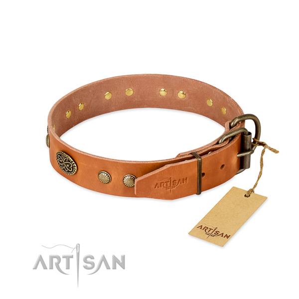 Durable adornments on leather dog collar for your doggie