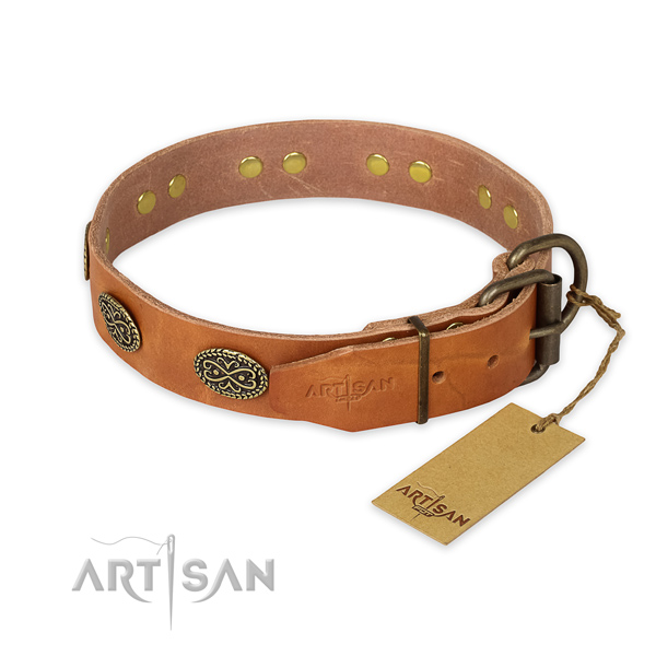 Corrosion proof fittings on genuine leather collar for everyday walking your pet