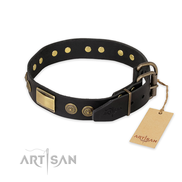 Rust-proof fittings on leather collar for daily walking your doggie