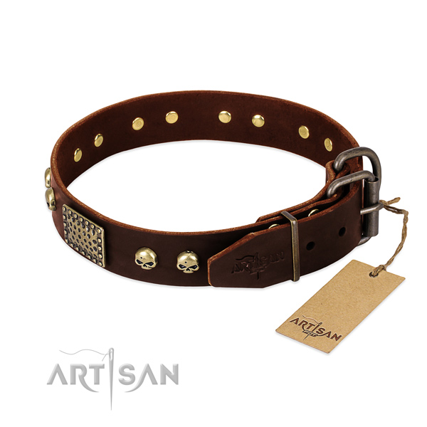 Reliable buckle on everyday walking dog collar