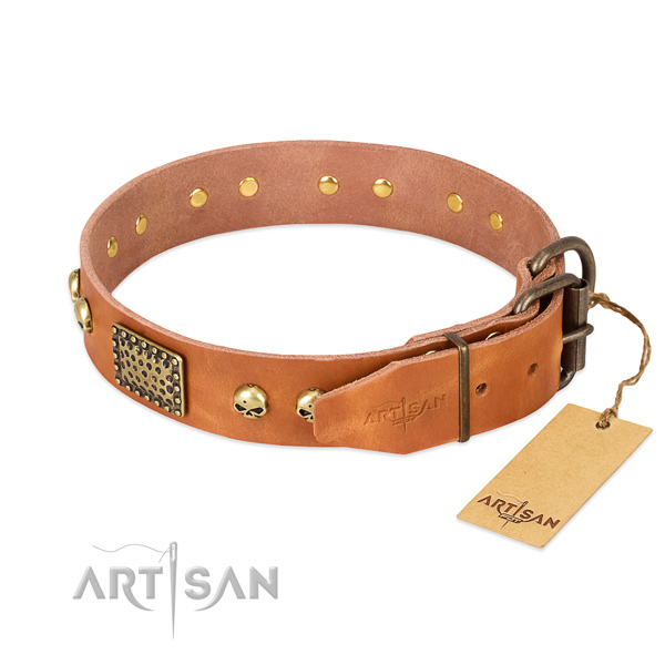 Durable traditional buckle on easy wearing dog collar