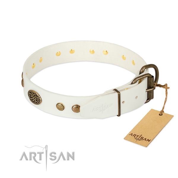 Rust resistant embellishments on natural leather dog collar for your canine