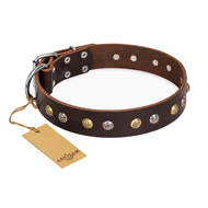 """Golden""n""Silver Luxury"" FDT Artisan Leather Rottweiler Collar with Engraved Studs"