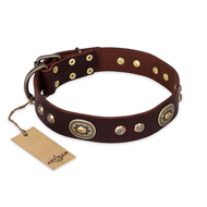 """Breath of Elegance"" FDT Artisan Decorated with Plates Brown Leather Rottweiler Collar"