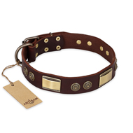 """Golden Stones"" FDT Artisan Brown Leather Rottweiler Collar with Old Bronze Look Plates and Circles"