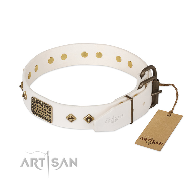 Full grain leather dog collar with strong fittings and decorations