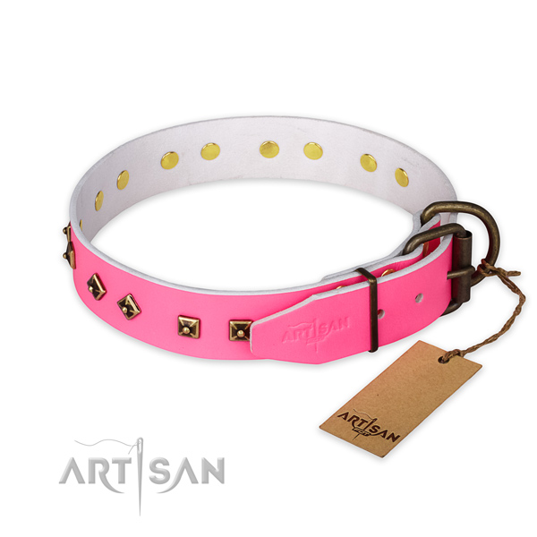 Rust-proof traditional buckle on genuine leather collar for fancy walking your four-legged friend