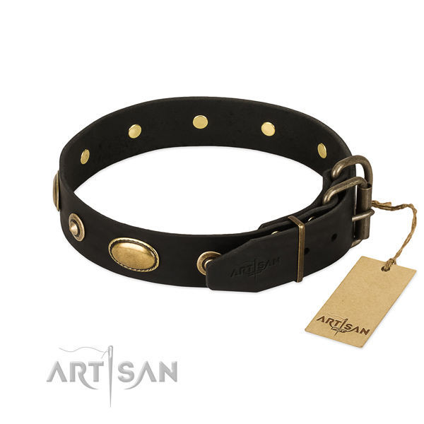 Corrosion proof embellishments on genuine leather dog collar for your four-legged friend