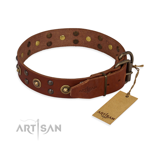 Corrosion proof fittings on leather collar for your handsome pet