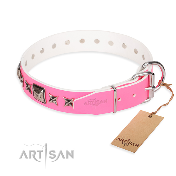 Top quality decorated dog collar of full grain natural leather