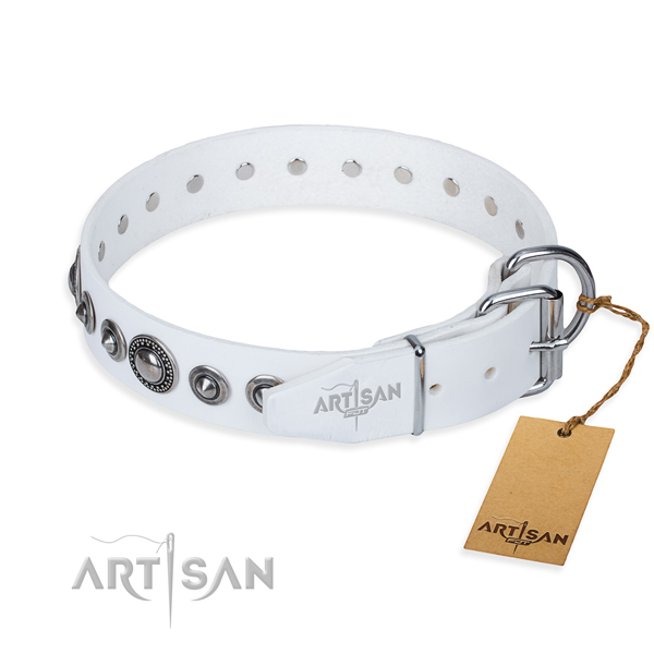Full grain natural leather dog collar made of quality material with rust-proof adornments