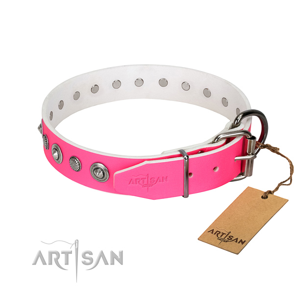 Finest quality full grain leather dog collar with fashionable decorations