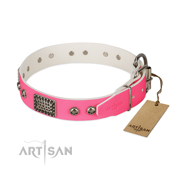 Strong decorations on everyday walking dog collar