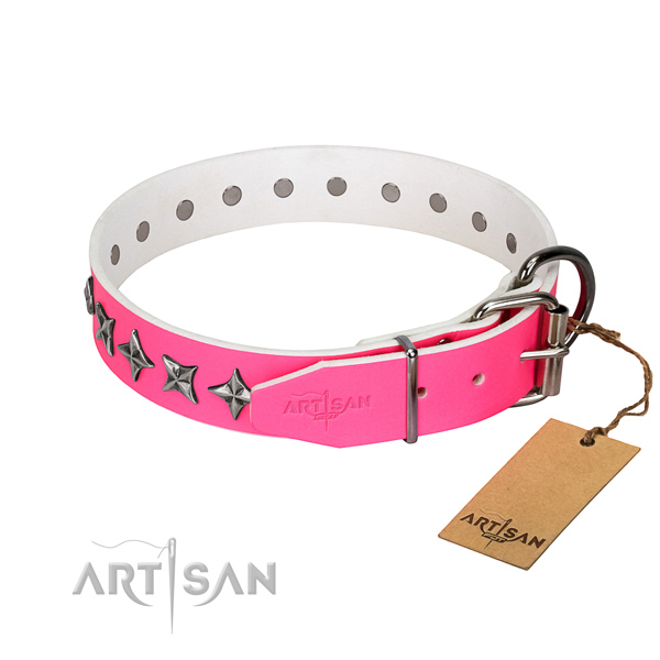 Top notch genuine leather dog collar with significant embellishments