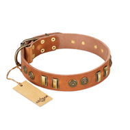 """Natural Beauty"" FDT Artisan Tan Leather Rottweiler Collar with Old Bronze-like Circles and Plates"