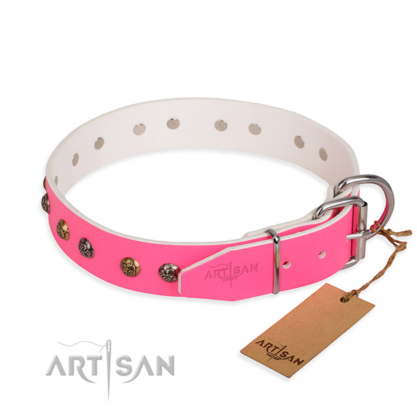 Full grain natural leather dog collar with incredible reliable studs