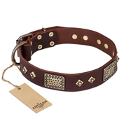 """Loving Owner"" FDT Artisan Decorated Leather Rottweiler Collar with Plates and Studs"