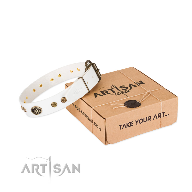 Reliable fittings on leather dog collar for your pet
