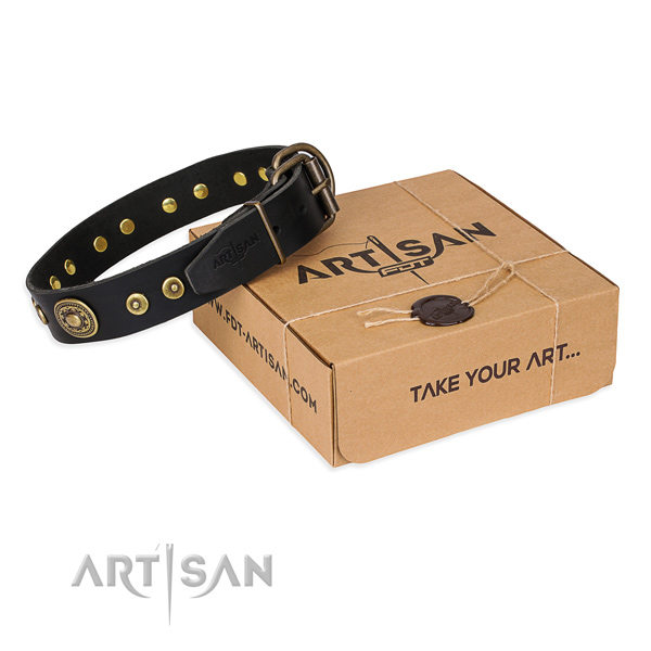 Genuine leather dog collar made of top notch material with corrosion resistant fittings