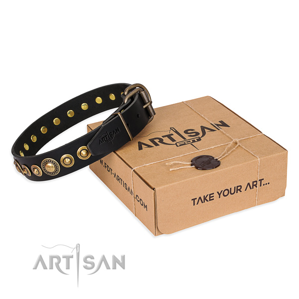 High quality genuine leather dog collar created for stylish walking