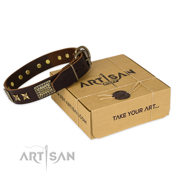 Strong buckle on full grain natural leather collar for your handsome dog