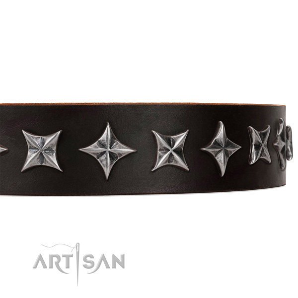 Stylish walking studded dog collar of durable full grain leather