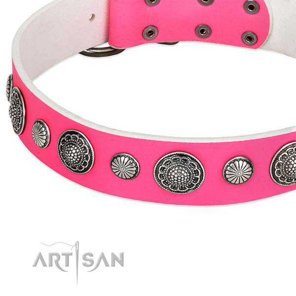 Genuine leather collar with corrosion resistant traditional buckle for your stylish doggie