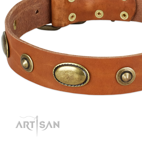 Corrosion resistant embellishments on genuine leather dog collar for your canine