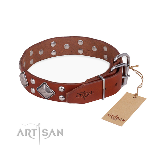 Natural leather dog collar with unusual corrosion resistant decorations