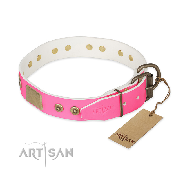Rust-proof decorations on handy use dog collar
