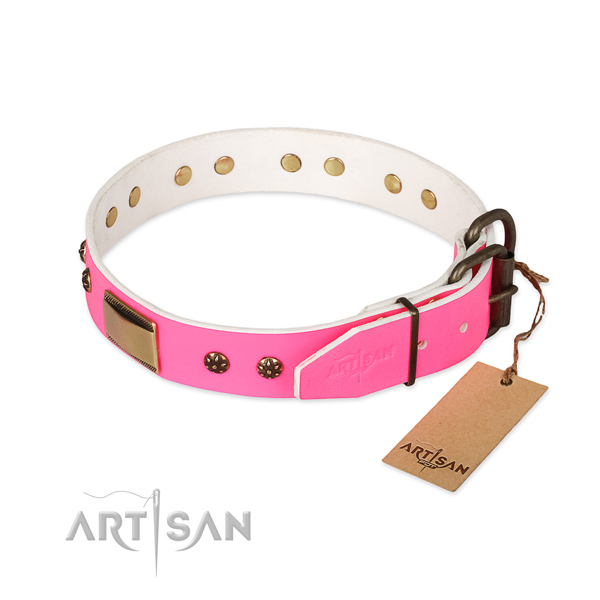 Corrosion resistant embellishments on full grain natural leather dog collar for your doggie