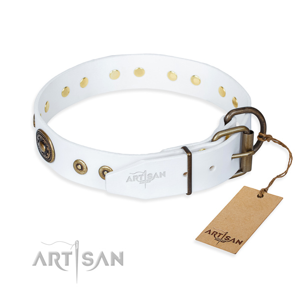 Full grain leather dog collar made of reliable material with reliable adornments