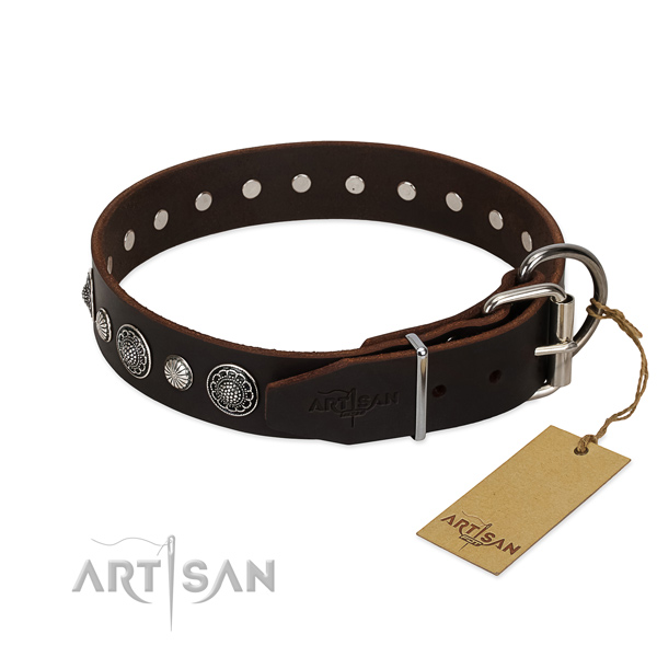 Strong full grain genuine leather dog collar with fashionable embellishments