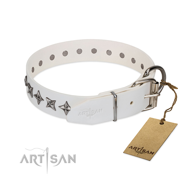 Comfortable wearing embellished dog collar of top quality leather
