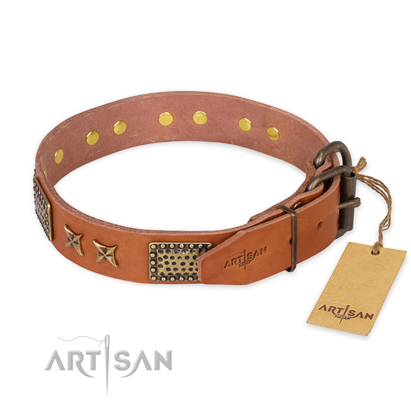 Reliable hardware on natural genuine leather collar for your stylish doggie