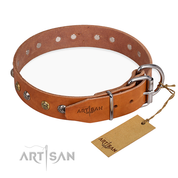 Full grain natural leather dog collar with fashionable corrosion resistant studs
