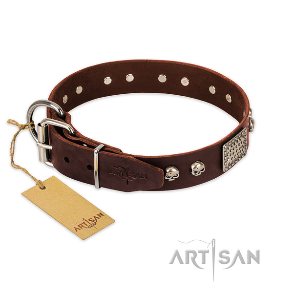 Corrosion resistant traditional buckle on comfortable wearing dog collar
