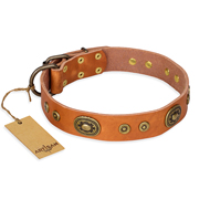 """Dandy Pet"" FDT Artisan Handcrafted Tan Leather Rottweiler Collar"