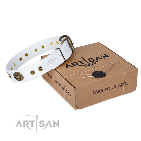 Full grain natural leather dog collar made of top rate material with corrosion proof traditional buckle