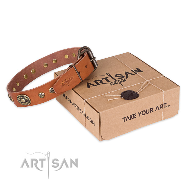 Rust resistant D-ring on natural leather dog collar for stylish walking