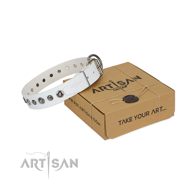 Durable full grain natural leather dog collar with significant embellishments