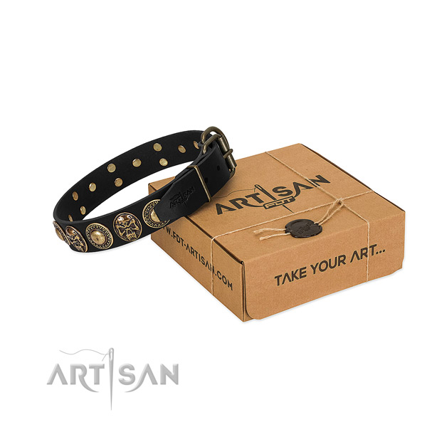 Rust-proof traditional buckle on dog collar for comfy wearing