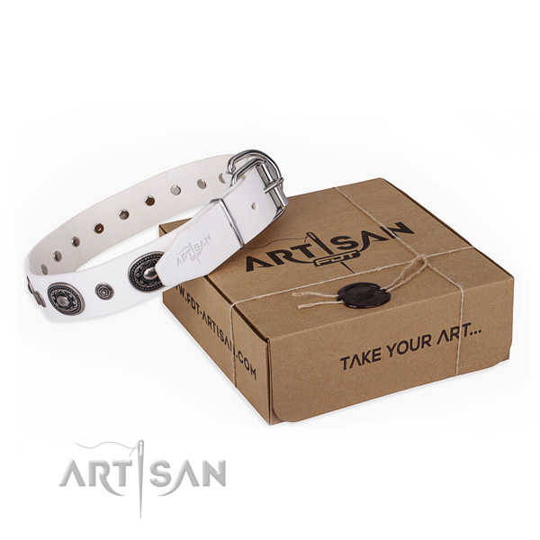 Top rate full grain leather dog collar made for handy use