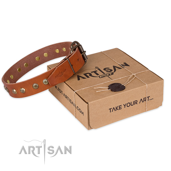 Strong traditional buckle on leather collar for your handsome doggie