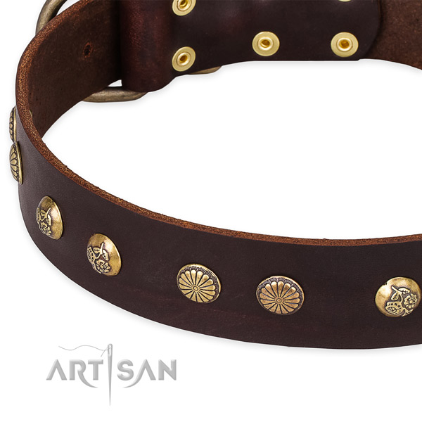 Full grain genuine leather collar with durable fittings for your attractive dog