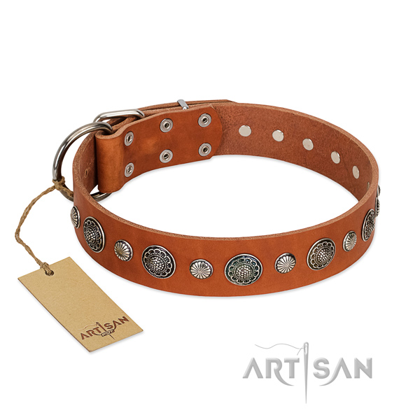 Reliable leather dog collar with rust-proof hardware
