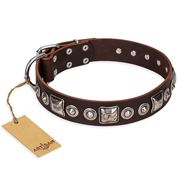 """Pierian spring"" FDT Artisan Brown Leather Rottweiler Collar with Silvery Decorations"