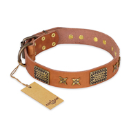 """Cosmic Traveller"" FDT Artisan Adorned Leather Rottweiler Collar with Old Bronze-Plated Stars and Plates"